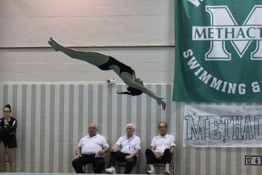 Senior Hayden Aubrey angled toward the water during her fist dive of the senior meet.