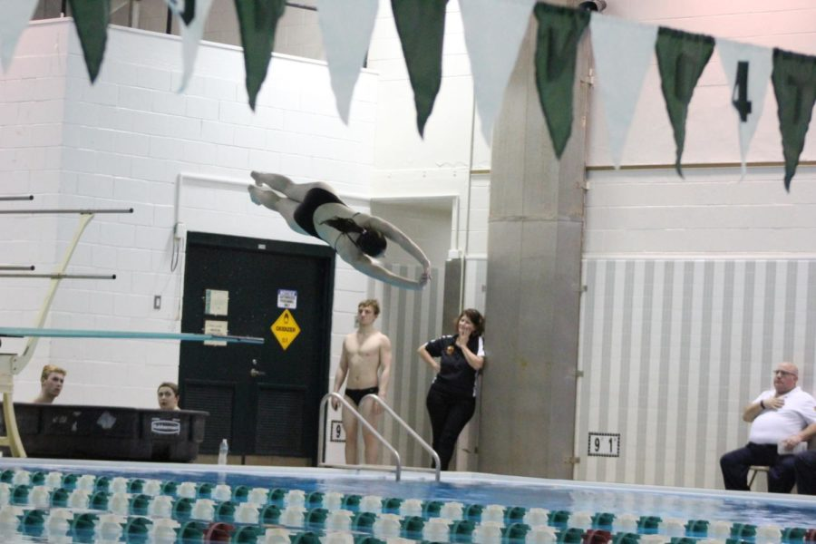 Senior Sara Nice performs her front dive half twist at the end of the diving portion of the meet.